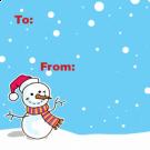 15N1 - Mr Snowman