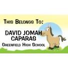 18BA brown donkey
